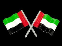 Reverse Phone Lookup - United Arab Emirates | ZLOOKUP