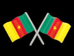 Reverse Phone Lookup - Cameroon | ZLOOKUP
